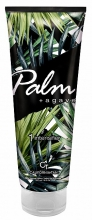palm-+-agave
