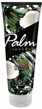 palm-+-coconut
